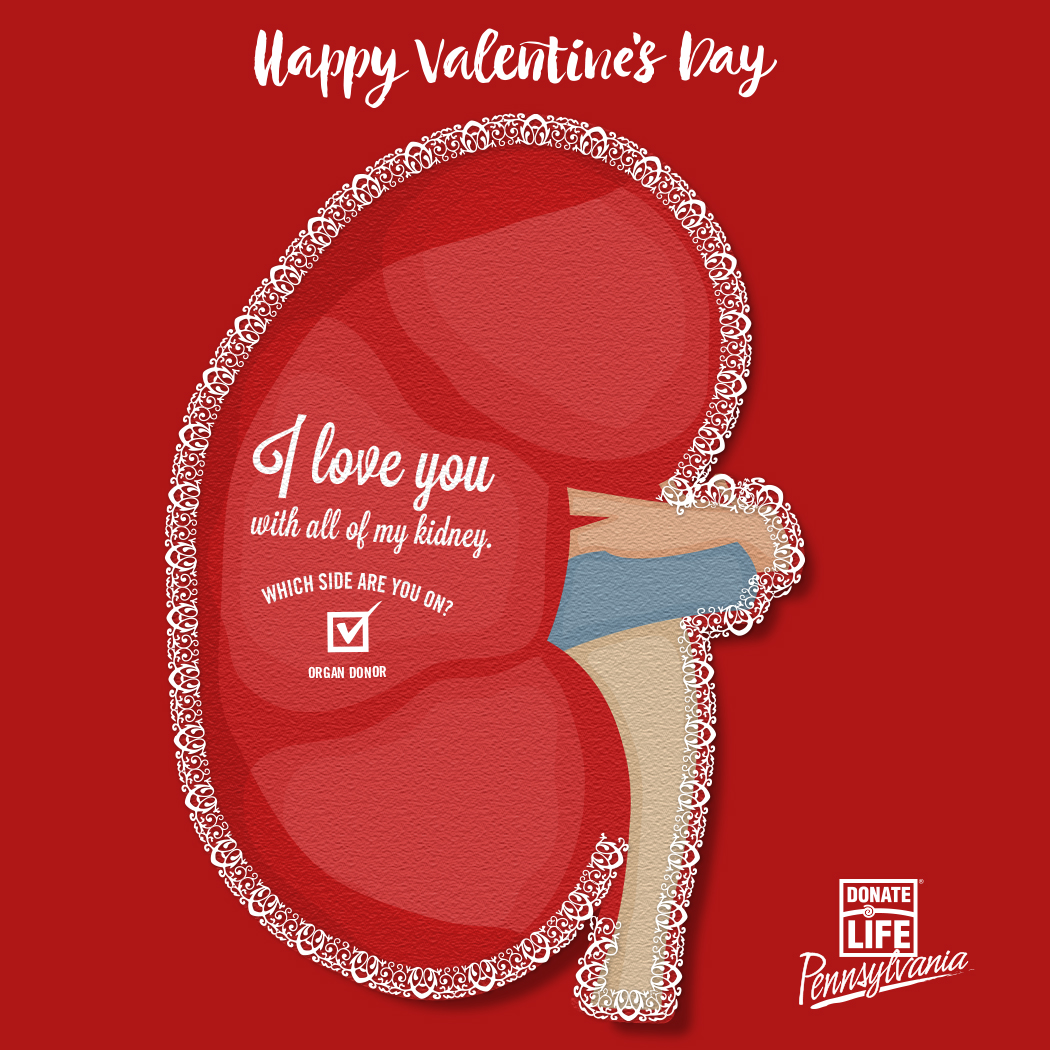 Donatelife Pa Valentines Day Cards